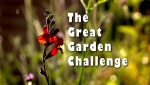 The Great Garden Challenge (2)